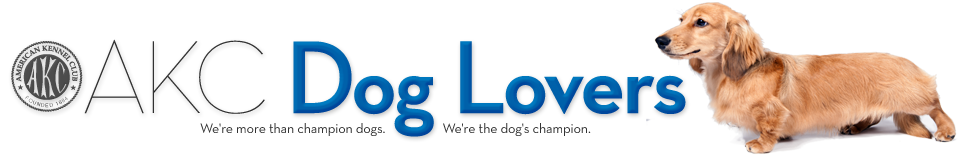 AKC Dog Lovers – AKC official blog
